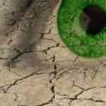 Sausų akių diagnostika | akių klinika Klaipėdoje